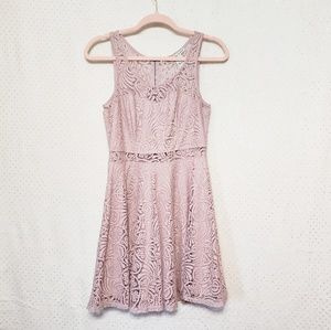 Lavender Blush* Lace Cutout Dress*American Rag*